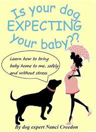 Is Your Dog Expecting Your Baby?